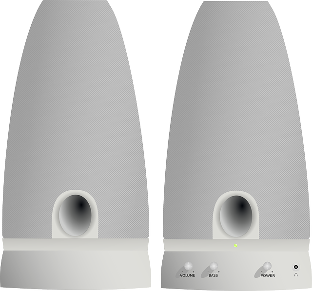 dva reproduktory