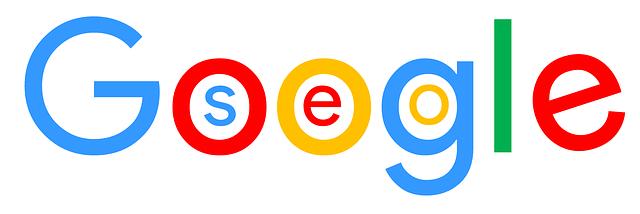 seo v google