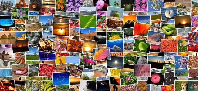 Inspirativní fotografie, kde je najdete?